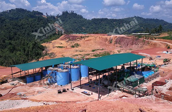 Malaysia 700tpd Gold Processing Project