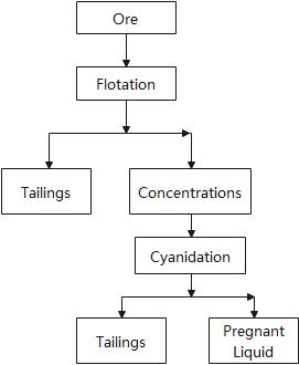 Flotation-Cyanidation Treatment.png